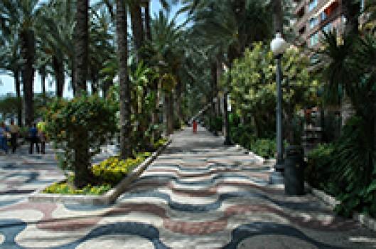 Ana - IRÁN. Alicante
