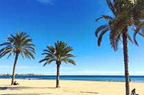 Anna Politi - Grecia. Alicante